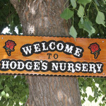 Hodge's Nursery & Gifts