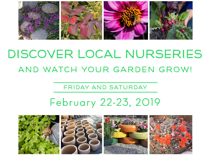 Local Nursery Crawl 2019 graphic with images of flowers and plants