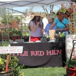 Little Red Hen Nursery: Garden Center