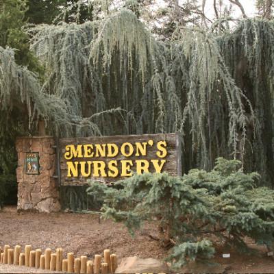 Mendons Nursery